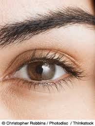 iridology 14 things your say about your health
