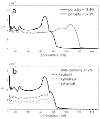 effects of coupled chemo mechanical processes on the evolution of