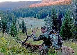 diy creative diy elk hunting inspirational home decorating fresh