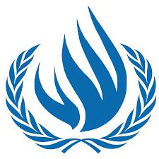 Oromo Flag United Nations Oromianeconomist