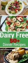 Free Dinner Ideas Best 25 Dairy Free Diet Ideas On Pinterest Dairy Free Free