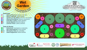 native plant database jakes branch wet garden ocean county soil conservation district