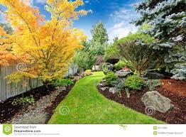 backyard landscape design tropical theme stock photo image