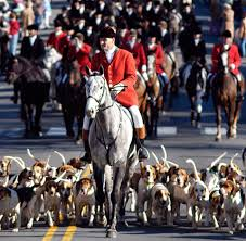 100 43 best middleburg images on pinterest virginia fox hunting