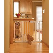 Cat Door For Interior Door by Cat Containment Cat Carriers Doors Outdoor Enclosures U0026 More