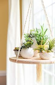 Home Decorating Plants 300 Best Plant Decor Images On Pinterest Plant Decor Apartment