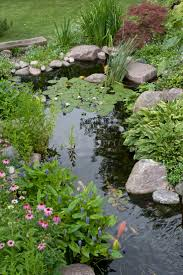 best 25 pond landscaping ideas on pinterest ponds diy pond and