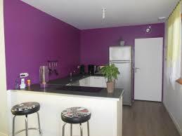 peinture tendance cuisine couleur tendance peinture avec id e peinture cuisine tendance