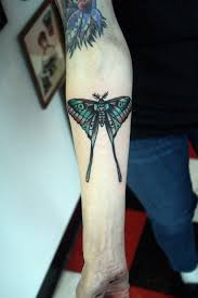 moon moth tattoo pictures to pin on pinterest tattooskid