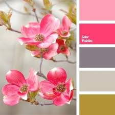pink matches with what color what color match brown bright pink color matching combination of