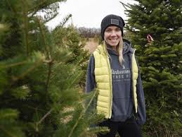 Christmas Tree Shopping Tips - shopping for a tree here are some tips