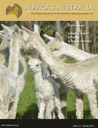 alpacas australia issue 73 by australian alpaca association ltd