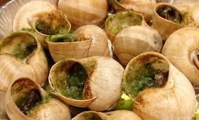 cuisiner les escargots de bourgogne food food recipe snails