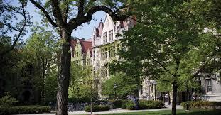 university of chicago niche