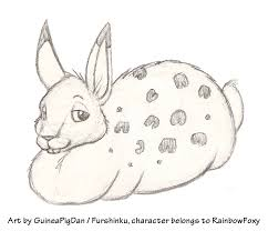 rainbowfoxy the fat rabbit sketch u2014 weasyl