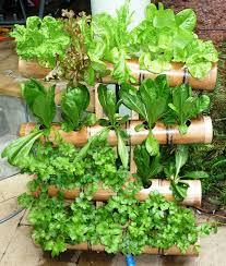 inspiring vertical gardens grow it pinterest gardens