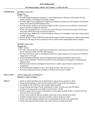 resume templates accountant 2016 subtitles softwares track r budget analyst resume sles velvet jobs