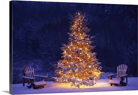 christmas tree with snow snow covering adirondack chairs by lit christmas tree wall