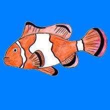clownfish coloring pages drawing for kids videos for kids