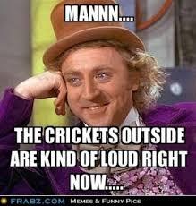Crickets Meme - hearing crickets memes memes pics 2018