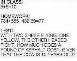 Memes Test - in class 5 5 10 homework 734 555 43269 77 test with two sheep