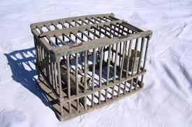 uccelli in gabbia gabbia per uccelli in legno da collezionismo a brogliano kijiji