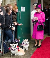 The Queen S Corgi Did The Queen U0027s Real Corgis Star In U0027the Bfg U0027 Her Pets Have Acted
