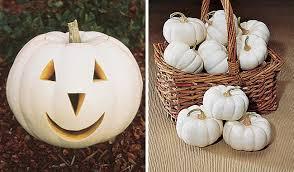 white pumpkins the many colors of pumpkins sensational color
