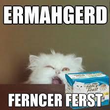 Newspaper Cat Meme - coolest newspaper cat meme all the latest news d some cat memes
