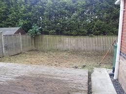 clearing overgrown garden of weeds and grass gardening forum
