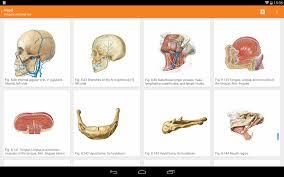 Human Anatomy Pdf Books Free Download Sobotta Anatomy Atlas Android Apps On Google Play