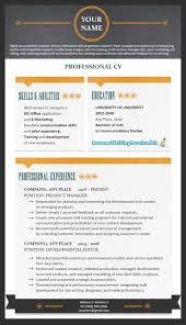 The Best Resume Font by Best 25 Best Resume Format Ideas On Pinterest Best Cv Formats