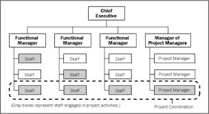 functional managers matrix organization