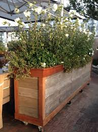 Extra Large Planters by Extra Large Planter Boxes Stained In Black Made To Order