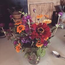 plain jane flowers u2013 hardda farm