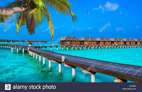 luxury water bungalows in maldives resorts stock photo royalty