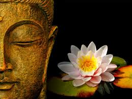 lord buddha wallpaper hd best lord buddha hd images excellent