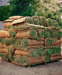 how to sod a new lawn huffpost
