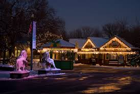 brookfield zoo winter lights gallery of lights windy city lights