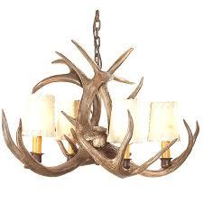 Deer Antler Light Fixtures Coues Deer Antler Chandelier 4 Light