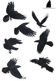 25 unique bird tattoo men ideas on pinterest mens arm tattoos