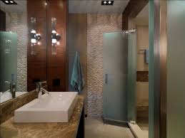 Frosted Glass For Bathroom Etched Glass Doors Bathroom Rustic With Ceiling Lighting Frosted