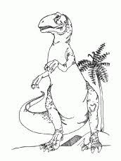 178 coloring pages kids images draw