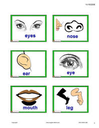 english for kids esl kids body parts flashcards
