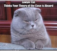 Lawyer Cat Meme - lawyer cat thinks your theory of the case is absurd lawyer meme on