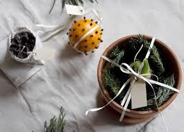 diy gift potted amaryllis bulb gardenista