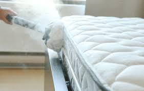 How To Get Rid Of Bed Bugs In Mattress The Easiest Way To Exterminate Bedbugs Naturally And Efficiently