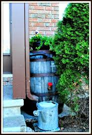 how to convert a whiskey barrel into a water barrel small garden
