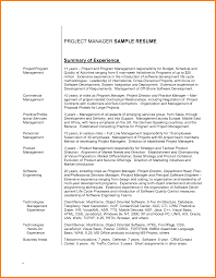 Resume Overview Samples by Resume Software Engineer Best Free Resume Collection