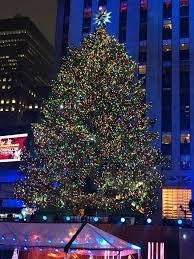 Rockefeller Tree The Rockefeller Center Tree Goes Live